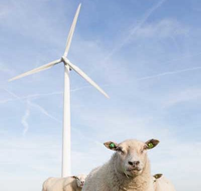 Windenergie: Anleger geprellt / Quelle: Fotolia