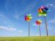 Windrad: Heiße Luft für Kapitalanleger / Quelle: Fotolia